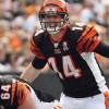 Bengals vs Browns NFL Week Two AFC North Handicapping