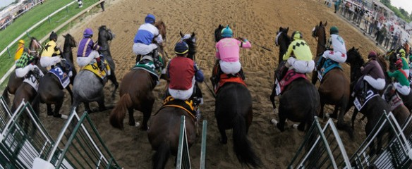 Triple Crown Exotic Wagering: Preakness Stakes Exacta Betting